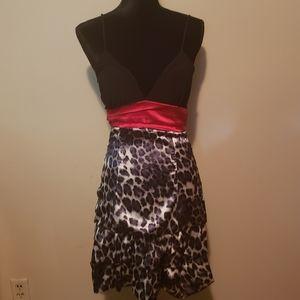 Leopard/Cheetah Print Dress